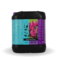 Blossom Builder Liquid 5L - стимулатор на цъфтеж
