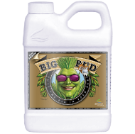 Big Bud Coco 250ml - стимулатор на тегло и обем на цвета в кокос